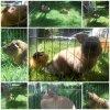 Photos prise le 22 juin 2012