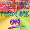 David Guetta - Turn Me On (Feat. Niki Minaj)