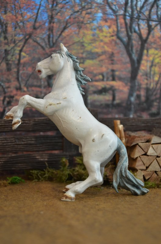 cheval cabré blanc PAPO 2004