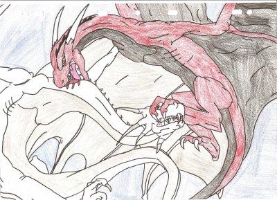 des dragons qui se battent