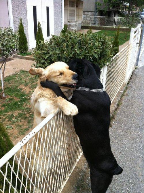 L'amour est souvent dans les paroles qu'on ne dit pas.