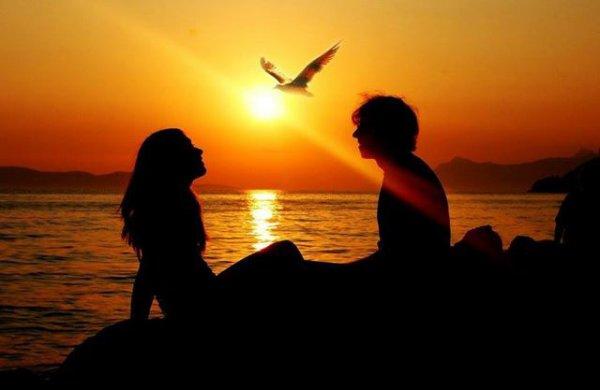 Trop de gens choisissent un partenaire comme ils choisissent une voiture alors que l'amour vrais et le bonheur appartiennent aux valeurs spirituelles.