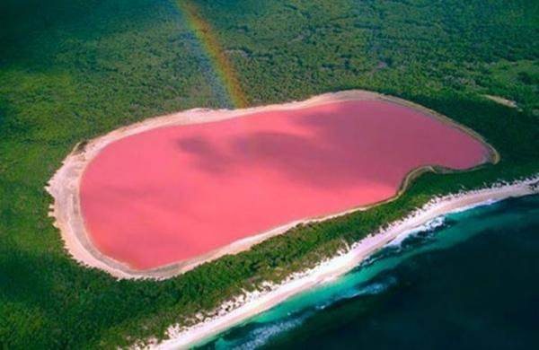 Beauté du monde : le lac Hillier, un lac rose d Australie