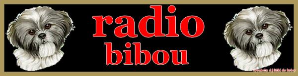 news lien pour ma radio>>>http://radio-bibou.jimdo.com/