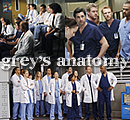 Photo de Ox-Greys-Anatomy-xO