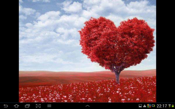je vous offre ce coeur