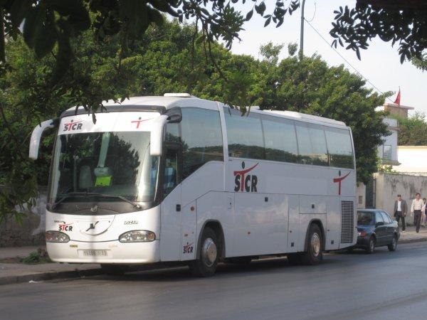 احدى الحافلات التي نقلت البلطجيةمن مدن أخرى  لتجييش المؤتمر المطبوخ