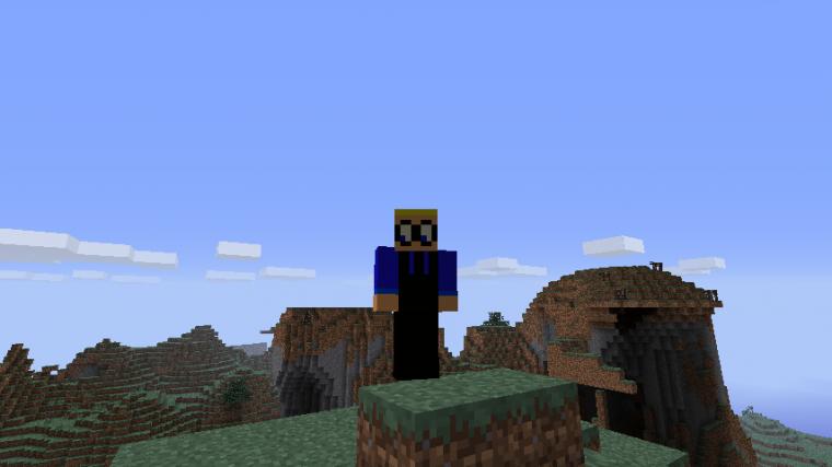 Moi sur Minecraft