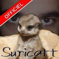 Suricatt