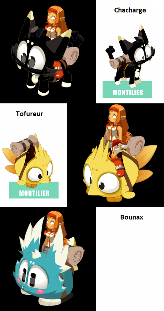 Articles de guilde ensemble tagg s dofus pets jeu blog for Dofus le jeu