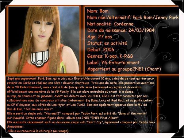Présentation des membres 2NE1