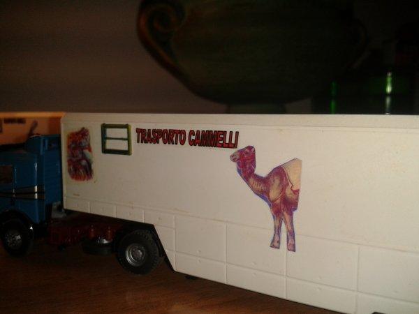 nuove decals per i carri trasporto cavalli,cammelli e dromedari,e struzzi e lama.