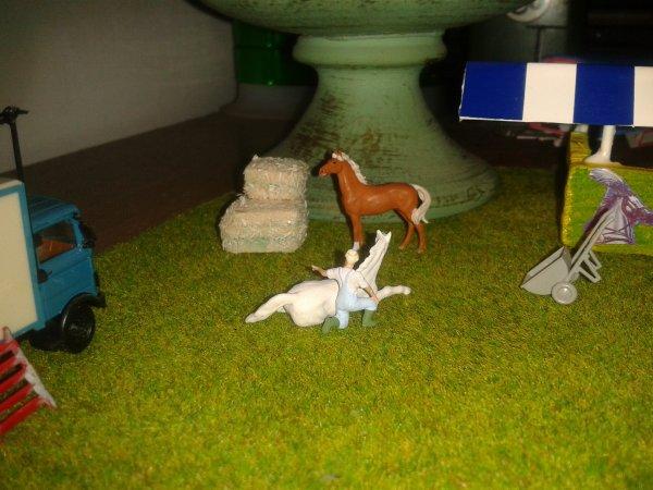 nuova stalla-tenda cavalli.