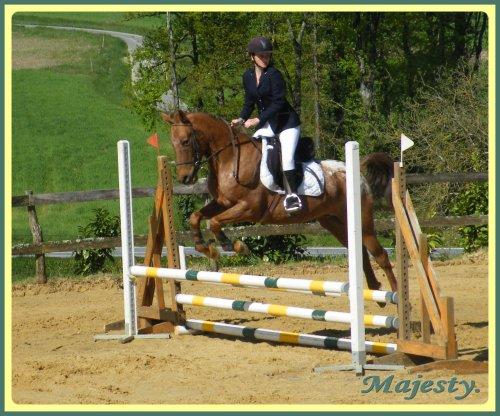 ...♥... On ne peut pas prétendre métrisé un cheval tant qu'on ne se métrise pas sois méme  ...♥...