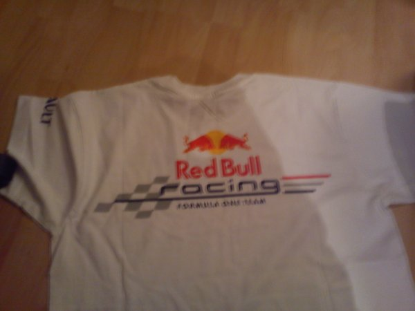 Formule 1 , Team Red Bull Renaut