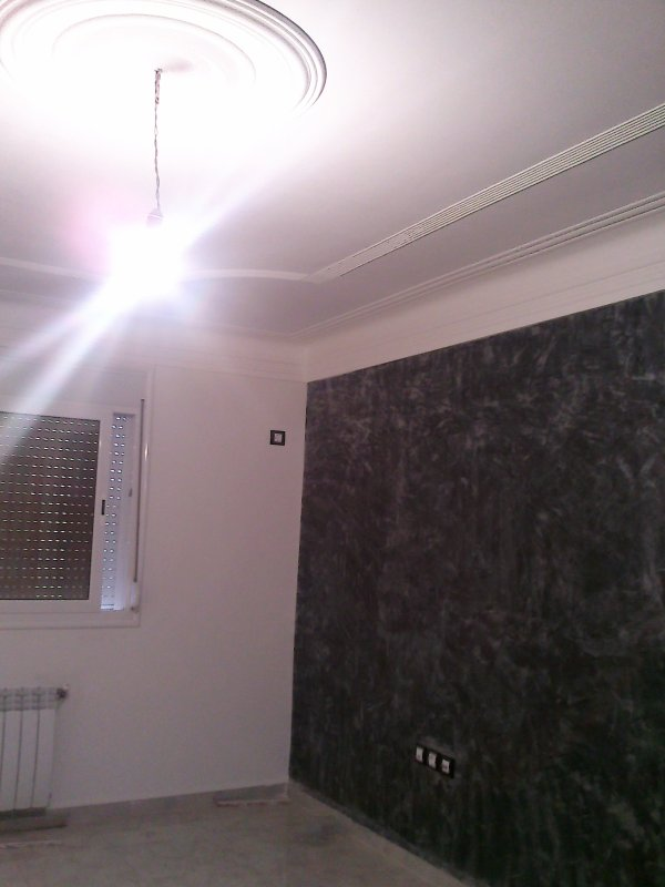 placo platre ba 13 artisan decorateur mobil 07 71 71 98 98. Black Bedroom Furniture Sets. Home Design Ideas