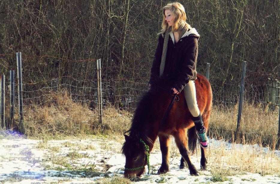 → Petit poney sauvage au grand coeur ♪
