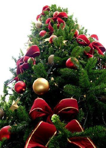 Joyeux  $)  Noël