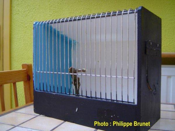 Cage photo de juillet 2008 à décembre 2012.