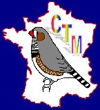 CTM 2016