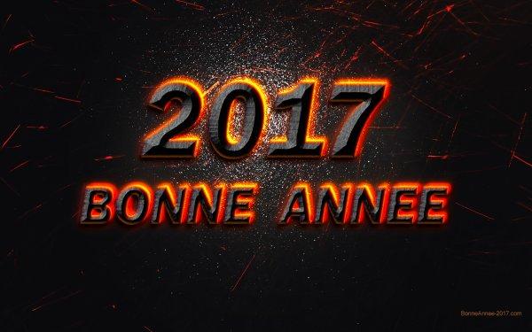 Bonne année 2017.