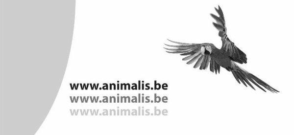 animalis.be