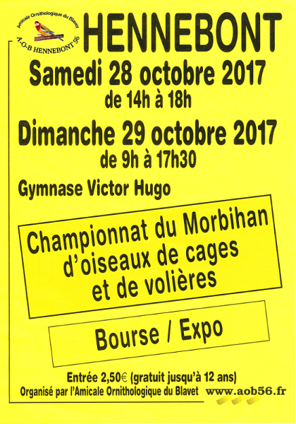 Championnat du Morbihan.
