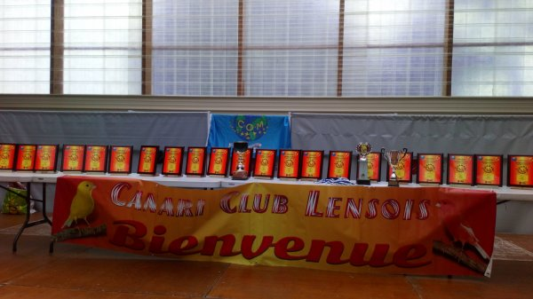 Lens International COM.