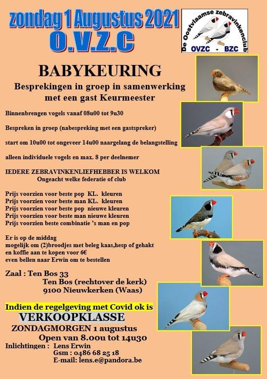 Baby-Show Mandarin en Belgique.