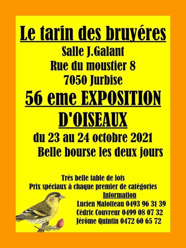 Exposition avec bourse en Belgique.