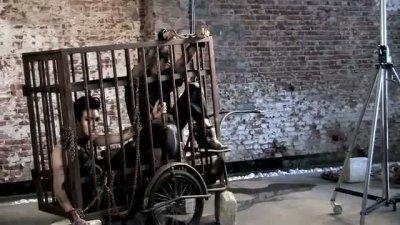 Campagne P.E.T.A : Pour le bien-être animal, les jumeaux de Tokio Hotel enchaîné