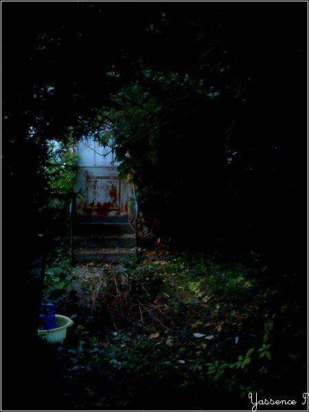 Un Jardin Abandonné