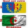 je suis kabyle algerian