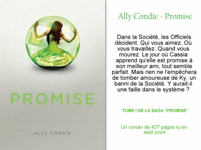 Promise, tome 1 : Promise || Ally CONDIE