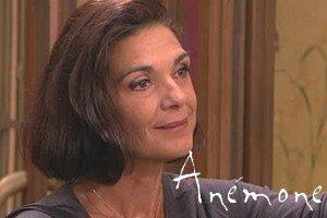 Anémone Vitreuil (Anne Canovas)