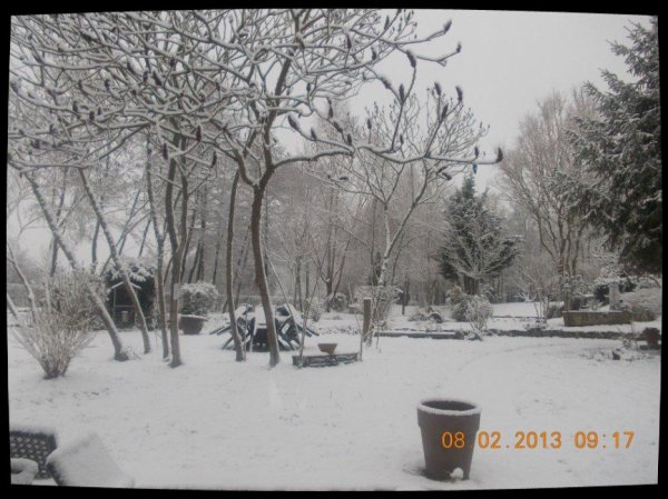 Ah' Tchoouume , Il Neige Ce Matin ! Youppii !