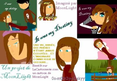 * It was my Destiny  { Le projet de MoonLiight }