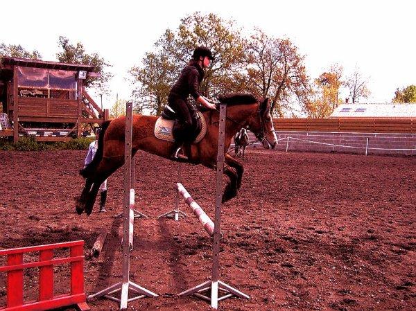 L'équitation, plus qu'une passion !