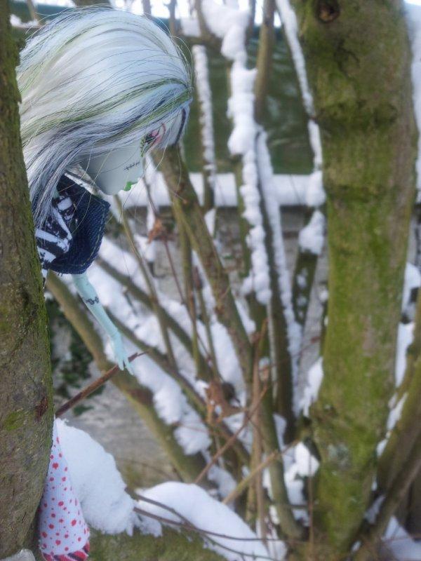 petite séance d'éscalade en pleine neige...