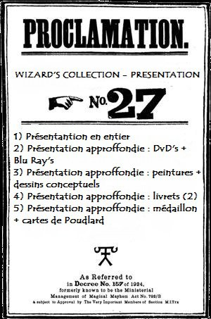 Annonce Wizard's collection