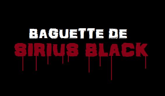 Baguette de Sirius Black - représentation (HD)
