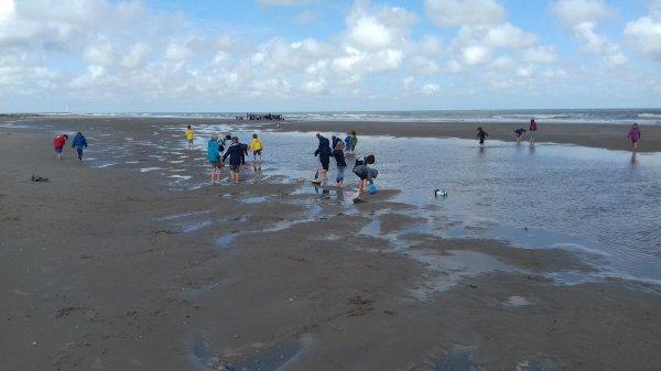 Mercredi matin ... Tout le monde a bien dormi jusqu'à 7h. Au programme course de bateaux et jeux dans les dunes sous le soleil 🌞🚢