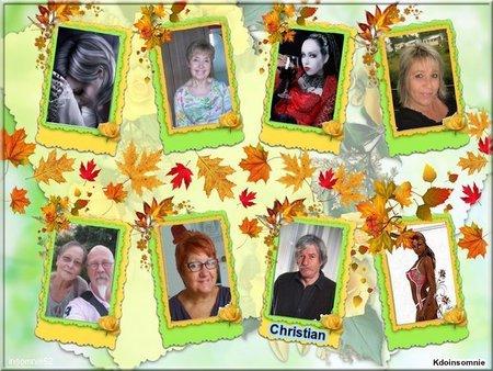 Cadeaux de mes amis(es) Bellesimages33 - Kdoinsomnie - Johnnyhallydaynini -  Josy41 - Chiara643 -  Amina-princesse-reveuse -  Dolphingreg