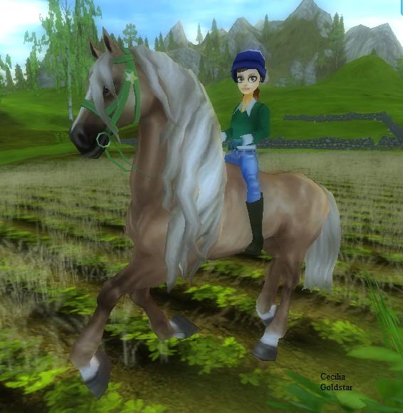 ~ Présentation des chevaux . - 1