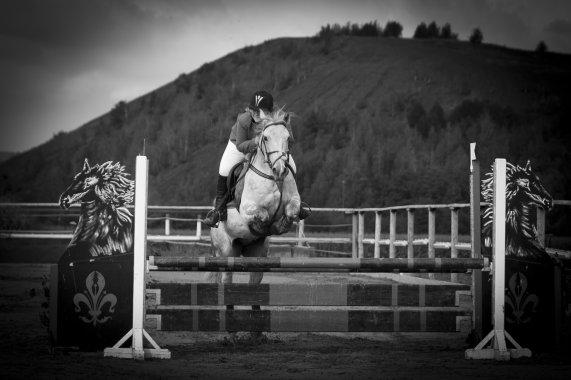 Le meilleur des chevaux n'est pas celui qui t'as mené ou tu voulais alors que tu étais en selle, mais celui qui a fais voyager ton c½ur alors que tu l'écouté respiré ♥