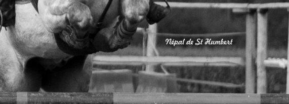 """"""" Lance ton c½ur par dessus les obstacles ; Ton cheval te suivra """""""
