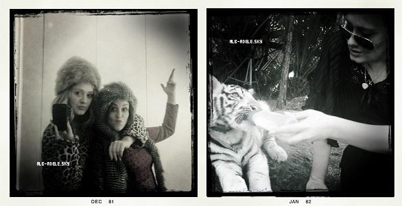 """07 / 01 / 12 : Adele a posté une nouvelle photo sur twitter, on peut la voir en compagnie d'un petit tigre blanc.21 / 12 / 11 : A. a posté une nouvelle photo sur twitter, elle est toute belle, prête à aller chanter sur scène.07 / 12 / 11 : A. a posté une nouvelle photo, elle est en compagnie de sa meilleure amie : @lauradockrill.03 / 02 / 12 : """"Someone Like You"""" est nominé pour les BRIT Awards.Je la trouve sublime sur les 3 photos, j'aimerais être à la place de sa meilleure amie, pas vous ? Votre photo préférée ?"""