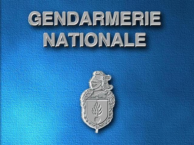 **Gendarmerie : Une Force Humaine**