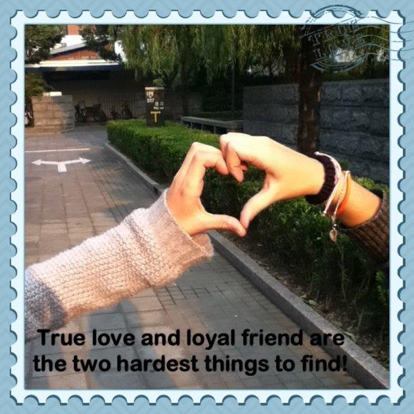 ~ Friends ship~
