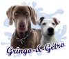 Gringo-et-Getro